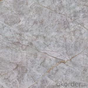 Glazed Porcelain Floor Tile 600x600mm CMAX-S6688