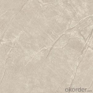 Glazed Porcelain Floor Tile 600x600mm CMAX-S6693