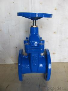 Gate Valve withCast Iron DN50~DN600 PN1.0/1.6MPa Resilient Seated Water