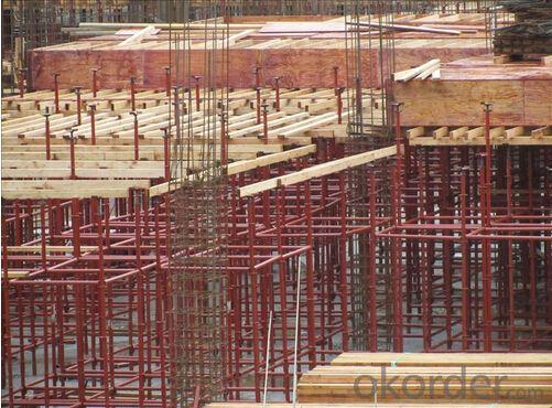 Paint/Galvanized Cuplock Scaffolding system,Construction Scaffolding System,Scaffold System