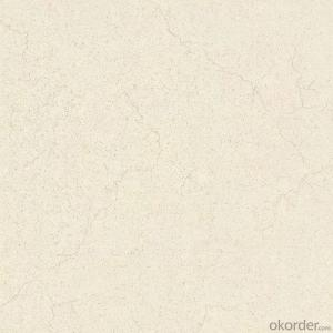 Glazed Porcelain Floor Tile 600x600mm CMAX-G6028