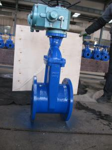 DIN Cast Iron Resilient Seated Flanged Gate Valve F4