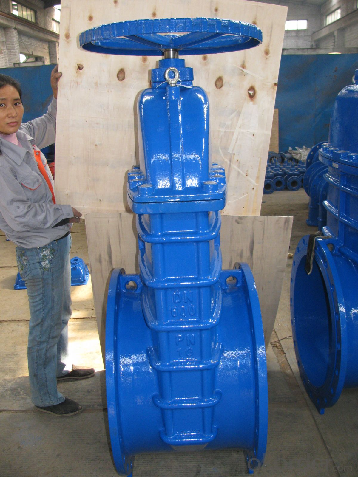 Cast Iron Gate Valve DIN 2014