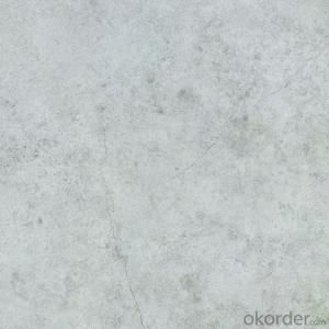 Glazed Porcelain Floor Tile 600x600mm CMAX-TS6005