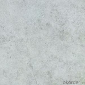 Glazed Porcelain Floor Tile 600x600mm CMAX-TS6005