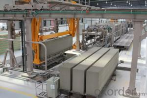 CNBM Autoclaved Aerated Concrete Full Automatic Production line