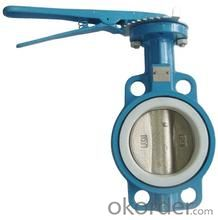 Butterfly Valve Manufacturer (double flanged/single flanged/U type/wafer type/lug type)