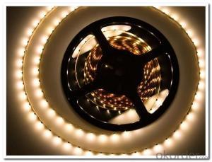 Led Strip Light DC 12/24V / 5V  SMD 5050 RGB+W 60 LEDS INDOOR VERSION