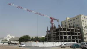JLP6010-8ton ToplessTower crane for construction site