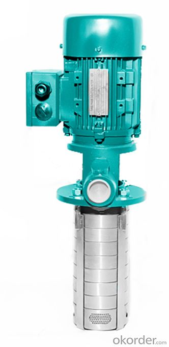 Vertical Multistage Clean Water Centrifugal Pump