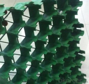 Plastic Grass Paving Grid / Plastic Parking Grass Grid /parking Grass Grid Manufacturer