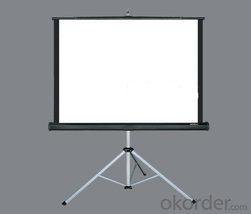 Tripod project screen with white matt