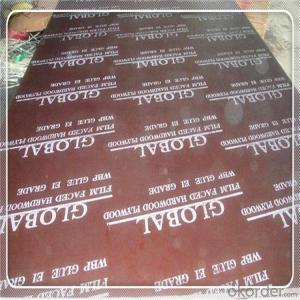 BLACK AND BROWN FILM FACED PYWOOD 18x1250x2500mm