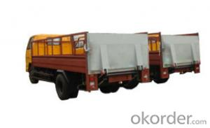 Special truck tail lift--DC-003 -  micro pygidium