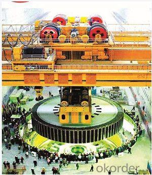Lifting Equipment Crane for Hydro-Power Plant EOT Crane