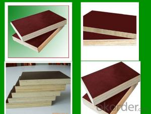 anti-slip Brown Film Faced Plywood  aa grade