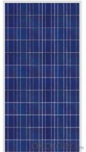 250W Poly  Solar Panles of CNBM Brand Competitive Price