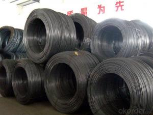 Wire Rod  High Qulity Hot Rolled Sae 1008b 5.5mmin Coils