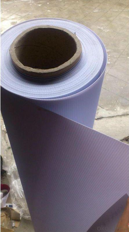 Advertising PVC Flex Banner Frontlit Printing Banner Vinyl Banner