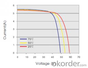 Monocrystalline Solar  Module   SM596-260W