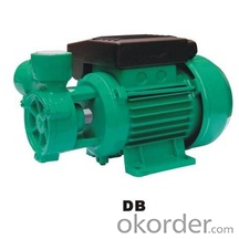 DB Series Vortex Pump for Water Supply With Rewindable Motor