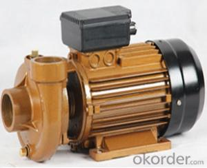 JET-100 1HP Self-priming JET Water Pump Italian Calpeda Model