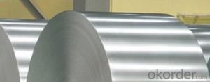 GALVANIZED STEEL COIL-SHEET WITH BEST SELLING