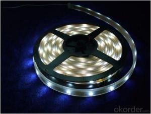 LIGHT Strip  Light SMD3528 60 LEDS PER METER  INDOOR  5 METER PER ROLL