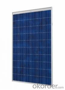 250w Polycrystalline Solar Panels stocks in West Coast