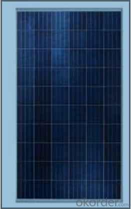 Solar PV panel 250Watt Polycrystalline Solar Panels