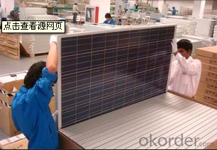 CNBM Poly&Mono Solar Panels made in Thailand