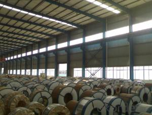 Electrolytic Tinplate Coil and Sheets for Food Packing