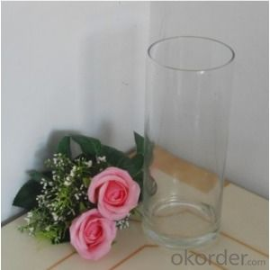 Clear Glass Vase Home Decoration Cylinder Flower holder Fashion Design Glass