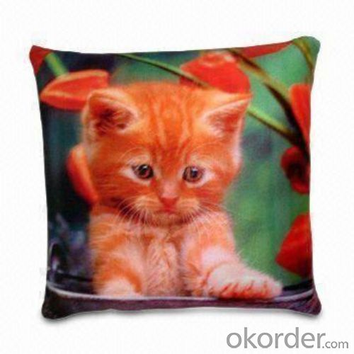 Square shape beads pillow with nice printing