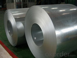 Prime quantity galvanized Steel Coils/Sheets from China