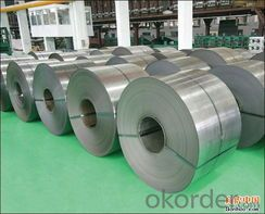 cold rolled steel coil / sheet / plate in CNBM