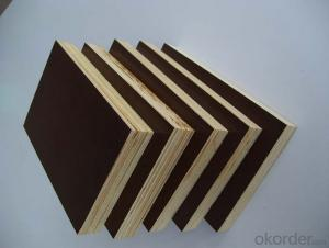 failm faced plywood/ marine plywood manufacturer
