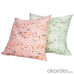 Beads Pillow of Square Shape with Nice Printing