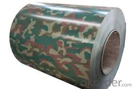 Steel Coil /color coated hot rolled steel coil/PPGI Coil