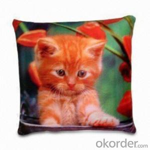 Super soft beads pillow with nice printing