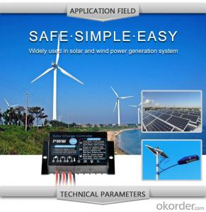Solar LCD Controller with Best Price Hot Selling Model IR210