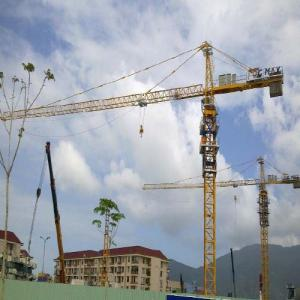 Tower Crane TC6520 Construction Machinery For Sale Tower Crane Manufacture