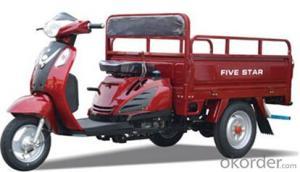 Three-wheel motor: 1B20906(110CC),adopts the high-quality ABS engineering plastics