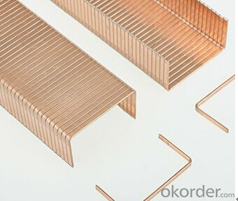 Industrial Staples or Furniture Staples Carton Staples