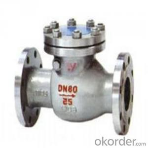 API Cast Steel Check Valve   250 mm in Accordance with ISO17292、API 608、BS 5351、GB/T 12237