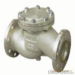 API Cast Steel Check Valve  65 mm  in Accordance with ISO17292、API 608、BS 5351、GB/T 12237