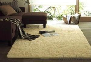 Shaggy Carpet Bath Floor Area Rug Washable