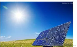 High efficiency PV Solar Module 250W from CNBM