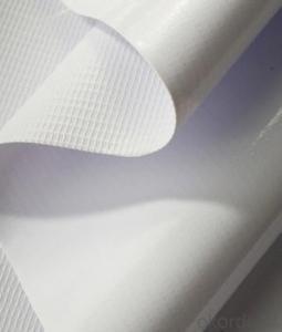 PVC Flex Banner for Printing Coated Frontlit Banner Custom Printing Banner