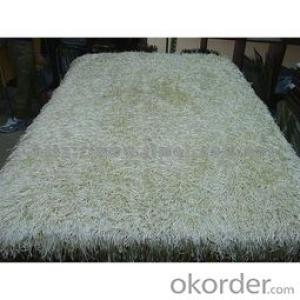 Carpets Machine Weaved with Shaggy Long Pile